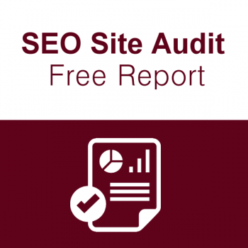 website-audit