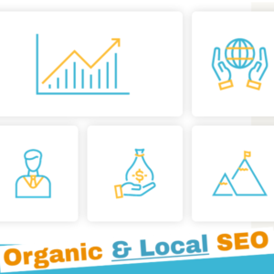 organic-n-local-seo-03